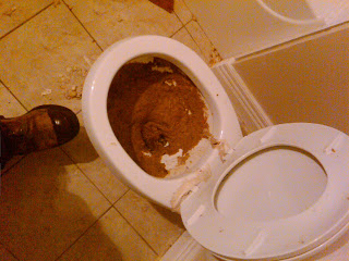 Plugged Toilet with Poo